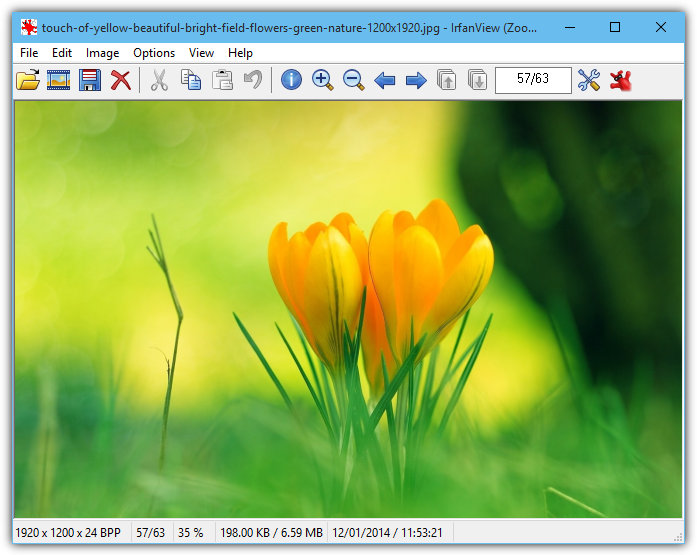 10 Image Viewers for Better Photo Viewing and Protection